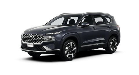 Тест-драйв автомобілів Hyundai - фото 16